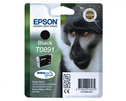 Epson T0891 Cartuccia inkjet nero originale (C13T08914020)