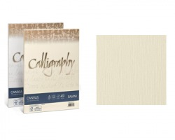Favini A69Q314 Calligraphy Canvas A4 200gr/mq 50 cartoncini - avorio 02